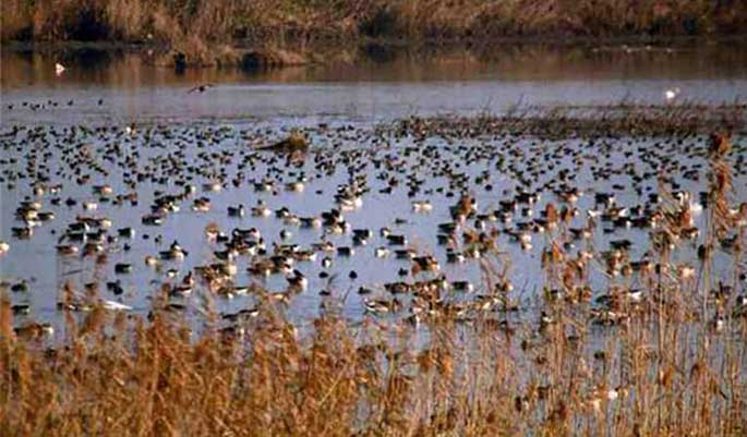 تصاویری از پارک ملی بوجاق